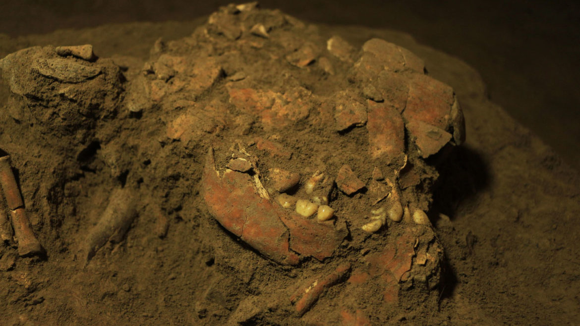 Historic DNA reveals the peopling of Southeast Asian islands was surprisingly advanced