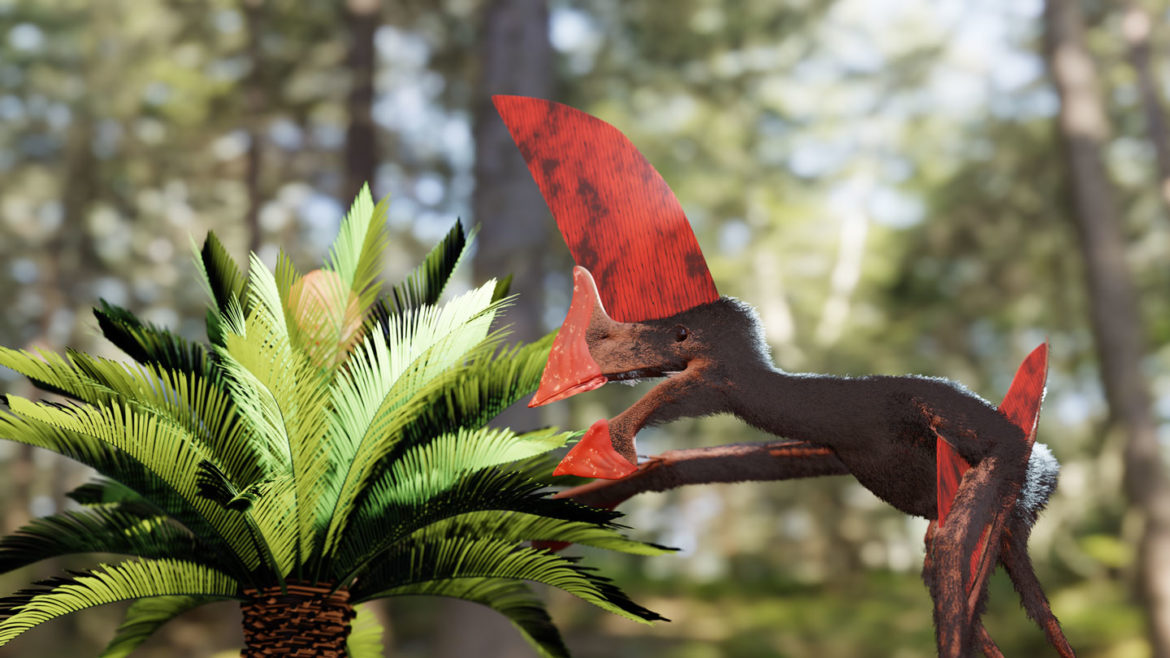 This big-headed pterosaur could have most well-liked strolling over flying